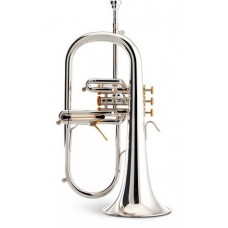 Elite Bb Flugelhorn - Model #5925 (Brass)